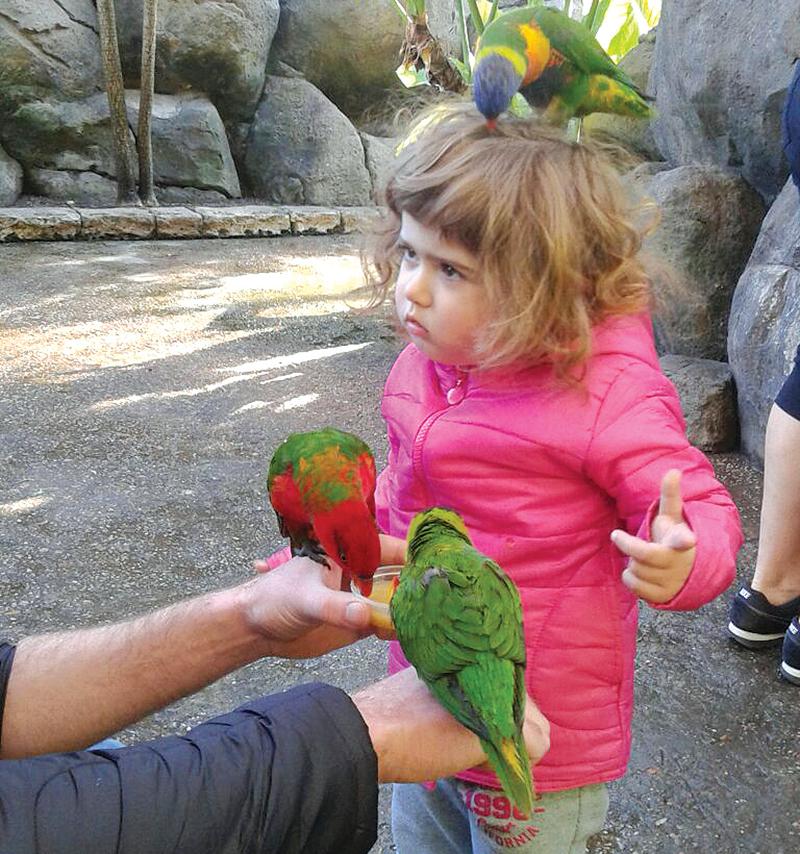 Vir die 2-jarige Mackenzie  Iverach is 'n besoek aan die Cango Wildlife Ranch se voëlpark altyd 'n groot avontuur.   Mackenzie is die dogter van Brandon en Elizabeth Iverach. Foto: Lydia Iverach