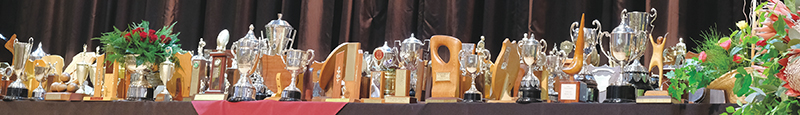 1 Trofees
