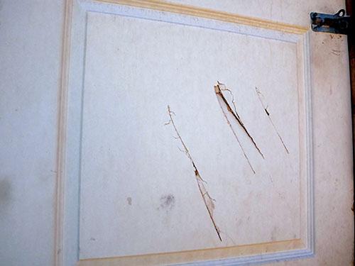 Die stukkende ruit links en die kapmerke in die deur regs wys hoe 'n huis in Bridgton verwoes is deur mense wat 'n inwoner met kapmesse aangeval het.        Foto's: Ilze-Mari Gründling