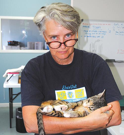 Dr Hilldidge Beer met een van die katjies wat verlede week gesteri-liseer is.             Foto verskaf