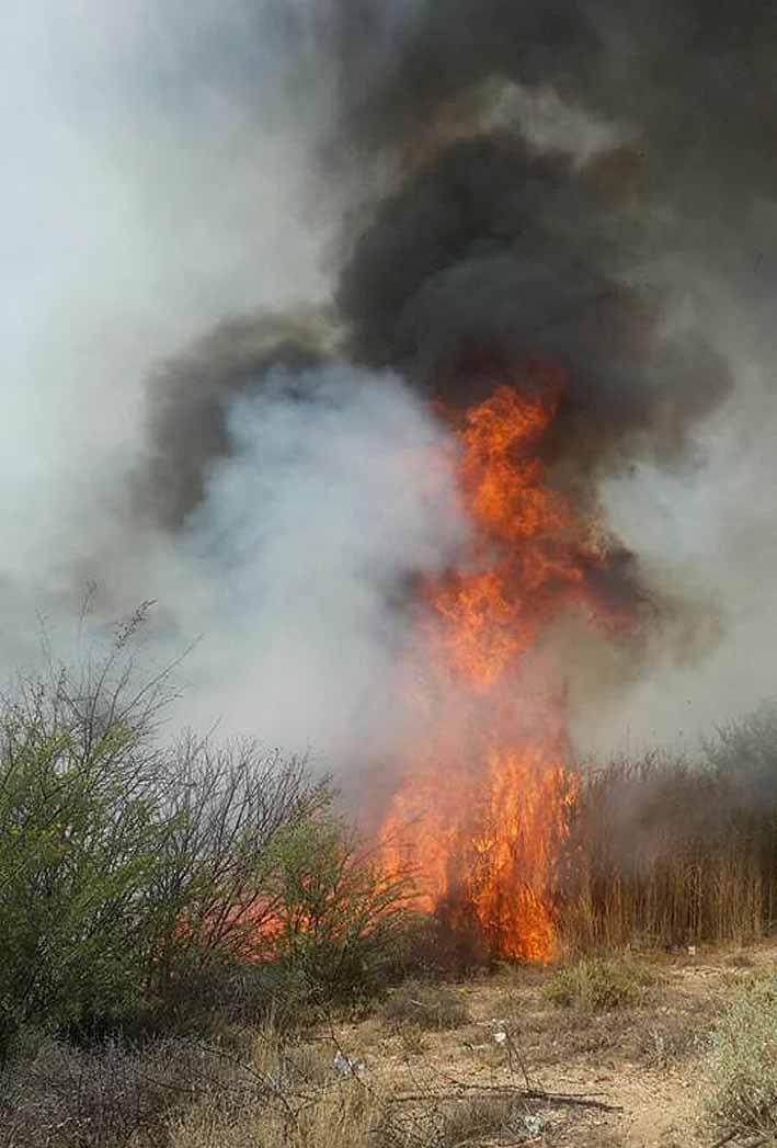 Rukwinde op pad met gevaar van veldbrande