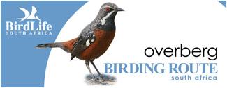 Bird Identification Course Along Route 62