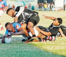 Spring Roses Rugbyklub wen naelskraap teen All Blacks
